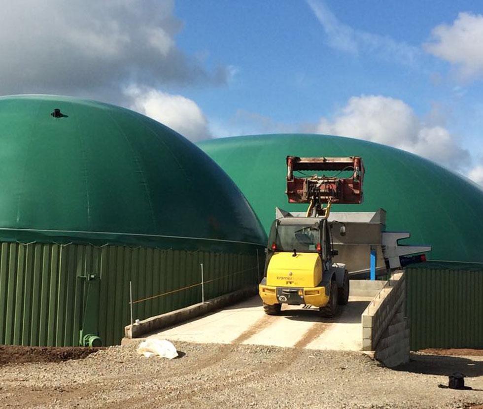 Fütterung Biogasanlage