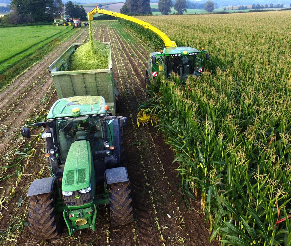 Maishäckseln Biogas Nürnberger BGVN