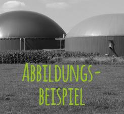 Abbildungsbeispiel einer Biogasanlage